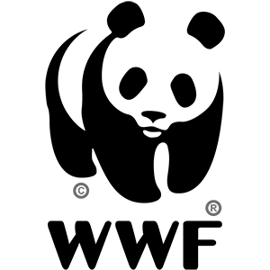 First Class Solutions worked forWWF